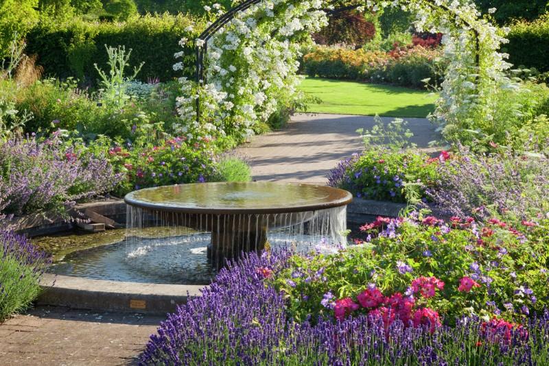 RHS-Garden-Wisley-June-RHS-Lee-Beel