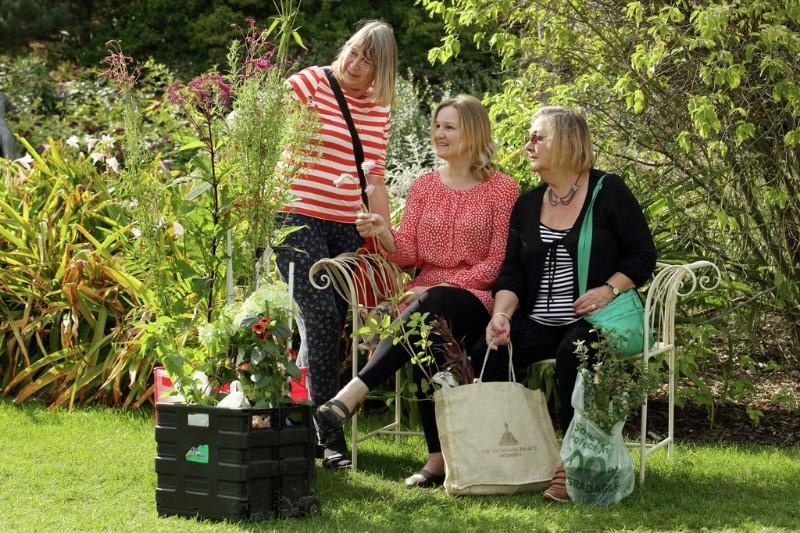 RHS-Garden-Wisley-Wisley-Flower-Show-cr-RHS_Luke-MacGregor