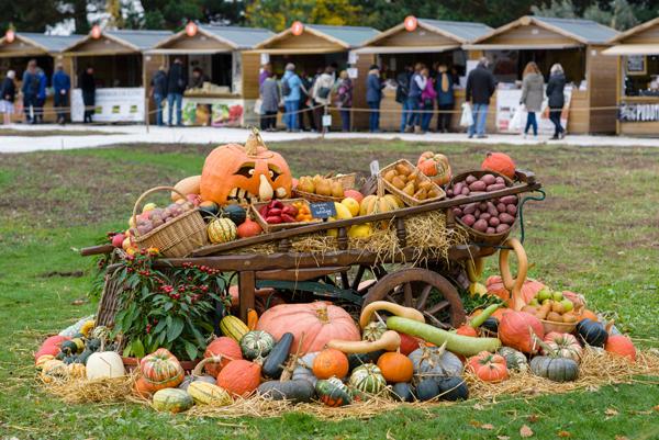 RHS-Garden-Wisley-October-2018-Taste-of-Autumn-1-cr-RHS-Georgi-Mabee-wois