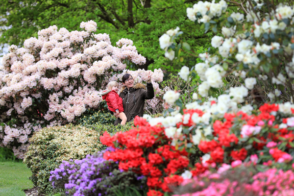 RHS-Garden-Wisley-May-National-Gardening-Week-cr-RHS-Oliver-Dixon-wois