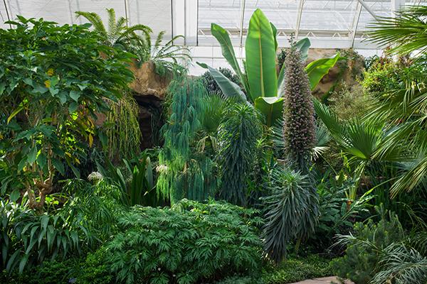 RHS-Garden-WIsley-GHT-cr-RHS_Neil-Hepwroth-wois