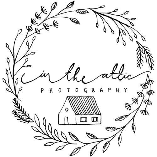 in-the-attic-photography-logo